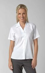 Freya - Long & Short Sleeve Plain Work Blouse